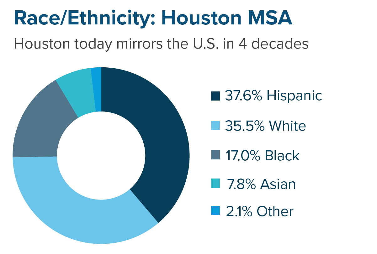 Houston race/ethnicity 2018
